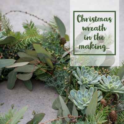 Christmas wreath in the making…